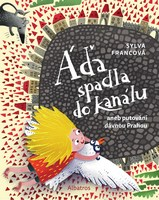 ada-spadla-do-kanalu